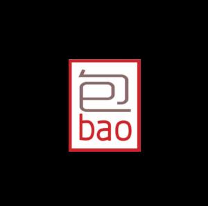 baotime-baos-lyon